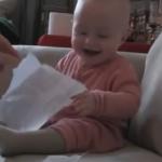 赤ちゃんおもしろ動画BEST3