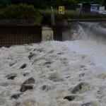 高知市全域に避難勧告って本当!?鏡川は氾濫?現地の情報&口コミまとめ